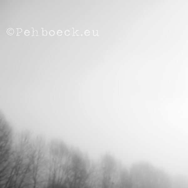 Foto 9 / Nature Photography