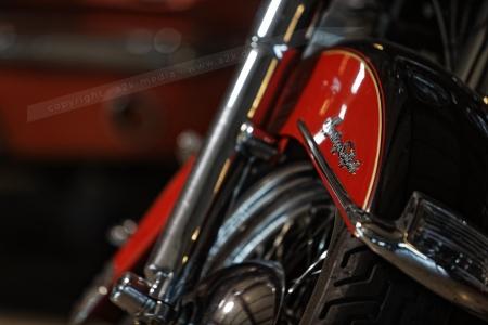 Harley Davidson Softtail rot