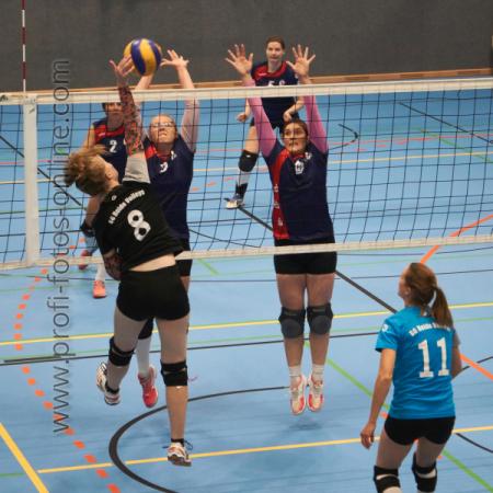 SVG: 2. Damen vs. TSV Stelle u. SG Heide-Volleys, 19.09.2020