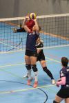 Foto 1 / SVG: 2. Damen vs. TSV Stelle u. SG Heide-Volleys, 19.09.2020