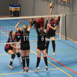 SVG: 2. Damen vs. TSV Stelle u. SG Heide-Volleys, 19.09.2020